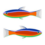 Vector illustration of colorful striped fish, isolated on the white background.  Royalty Free Stock Photo