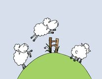 Vector illustration: counting sheeps and insomnia Royalty Free Stock Image