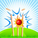 Cricket Ball hitting Stumps. Vector illustration of cricket ball hitting stumps stock illustration