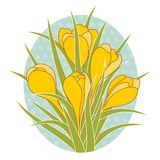 Vector illustration of crocus flower Stock Photography