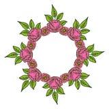 Vector illustration crowd frame flowers rose pink bloom stock illustration