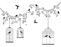 Vector illustration of curly blossom tree branches with hanging cages, wild and domestic birds. In black color Royalty Free Stock Image