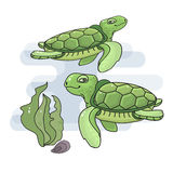 Vector illustration of a cute cartoon sea  turtle. Royalty Free Stock Photography