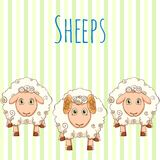 Vector illustration cute cartoon sheep. Vector illustration of standing sheep Royalty Free Stock Photography