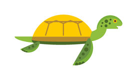 Vector illustration of a cute cartoon turtle. Stock Photo