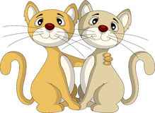 Cute couple cat Royalty Free Stock Images