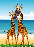 Cute couple giraffe cartoon with beach background Stock Photo