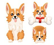 Vector illustration of cute dog Welsh Corgi. Nice puppy for greeting card, pet shop or veterinary clinics. Dog Welsh Corgi standin. G Web site page and mobile stock illustration