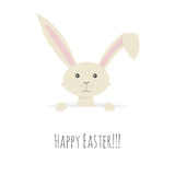 Vector illustration of Cute Easter Bunny Stock Photography