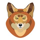 Vector illustration of a cute Fox on white background. Abstract  illustration of a cute Fox on white background Stock Photos