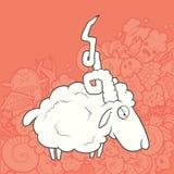 Vector Illustration Cute Hand Drawn Sheep Stock Image