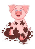 Vector illustration of cute pig in a puddle, funny Stock Photos