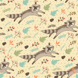 Vector illustration of cute raccoon. Stock Photography