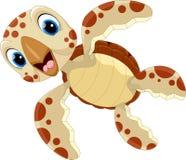 Vector illustration of cute turtle cartoon Royalty Free Stock Image