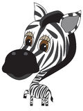 Vector Illustration of cute Zebra Stock Photo