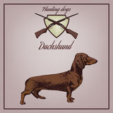 Vector illustration of dachshund and guns Royalty Free Stock Image