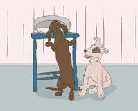 Vector illustration of a dachshund that steals food from the table royalty free illustration
