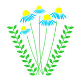 Vector illustration of daises with leaves, isolated on the white background Royalty Free Stock Photos