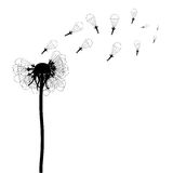 Vector illustration of dandelion on white. Vector illustration of dandelion with paratroopers on white background Royalty Free Stock Images