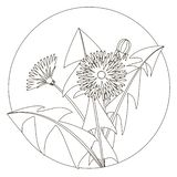 Vector illustration of dandelions with leaves and a flower. Black and white image. Contour of dandelion and leaves. Can stock illustration
