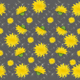 Vector illustration dandelions seamless pattern with leaves. Stock Photography