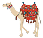 Vector illustration of decorated camel Royalty Free Stock Photography