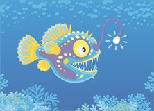 Anglerfish hunting deep in a sea Stock Images