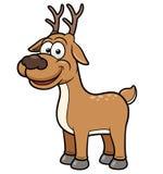 Deer cartoon Stock Images