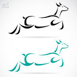 Vector illustration of deer Royalty Free Stock Images