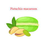 Vector illustration of a delicious French dessert. Macaroon pistachio. Macaron delicious green nutty sweetness  Stock Image