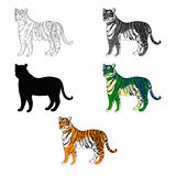 Vector illustration depicting a tiger. line silhouette, black and white, color. Royalty Free Stock Images