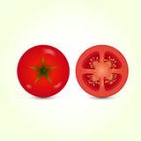 Vector Illustration der großen reifen roten frischen Tomate Stockfoto