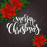 Vector Illustration der Weihnachtsgrußkarte mit Poinsettiablumen, Schneeflocken und dem fröhlichen Handbeschriftungsaufkleber - Lizenzfreies Stockfoto