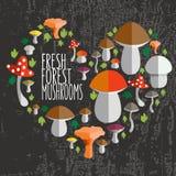 Vector Illustration des bunten flachen Designart-Wald-mushroo Lizenzfreies Stockbild