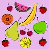 Vector Illustration des hellen Farbsatzes der Früchte lizenzfreie stockfotografie