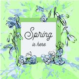 Illustration of Design banner with spring is here logo. Watercolor effect. Card for spring season with First spring. Vector illustration of Design banner with Stock Images