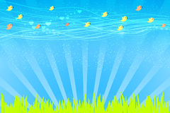 Vector illustration design. Birds on a meadow fly. The background is spring green. Vector illustration for your design. Birds on a meadow fly vector illustration