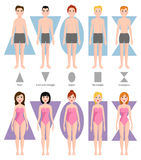 Vector illustration of different body shape types. Male and female standing beauty figure cartoon model. Graphic inverted proportions adult constitution Royalty Free Illustration