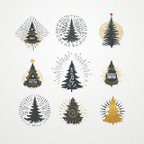 Vector illustration of different christmas trees with starburst. Royalty Free Stock Photo