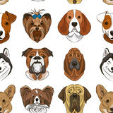 Vector illustration of different dogs breed. Pattern. Vector illustration, EPS 10 Stock Photos