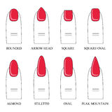 Vector illustration, different forms, shapes of nails. Manicure Royalty Free Stock Images