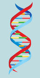 Vector illustration.  DNA Stock Images