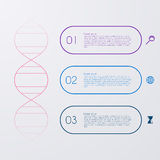Vector illustration of a DNA molecule infographics Royalty Free Stock Images