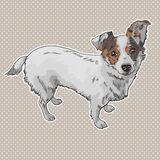 Vector illustration of the dog. Royalty Free Stock Image