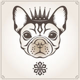 Vector illustration of the dog Royalty Free Stock Photos