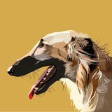 Vector illustration of a dog. Russian hound greyhound. On an orange background