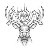 Vector illustration with dotted head deer with antlers, roses and leaves in black isolated on white background. Stock Photo