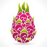 Vector illustration Dragon fruit Royalty Free Stock Photo