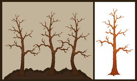 Vector illustration of dry tree Royalty Free Stock Photography