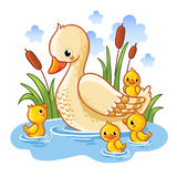 Vector illustration of a duck and ducklings. vector illustration
